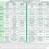 La enfermedad según la Homotoxicología. Tabla de Homotoxicologia