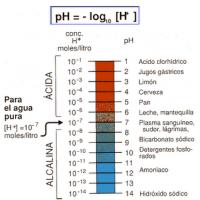 El pH y la salud