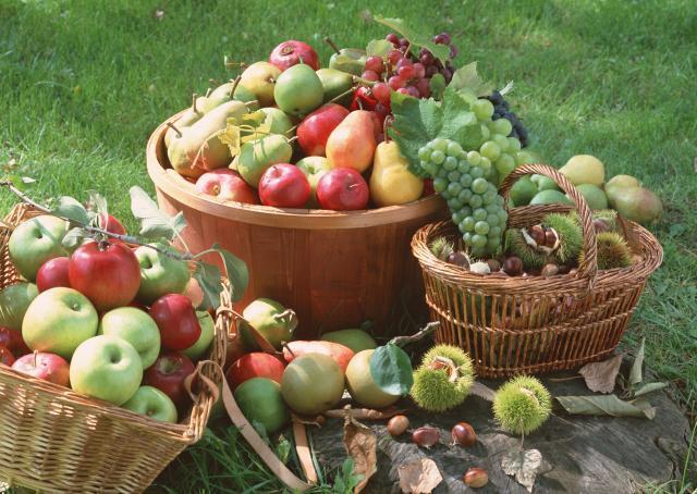 Los beneficios de los alimentos crudos