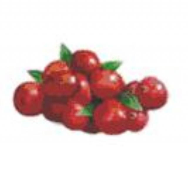 Propiedades de los arándanos rojos