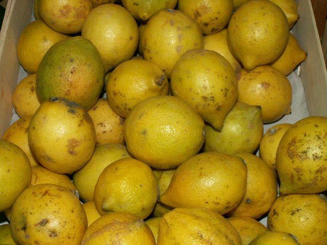 Limones, ricos en bioflavonoides