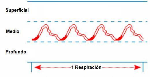Localización del pulso según la MTC