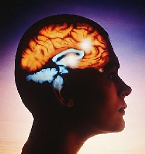 Medicina natural para la cabeza