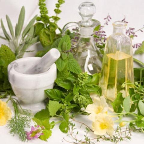Remedios homeopáticos - Para el estómago