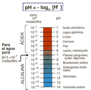 pH - Acido y alcalino