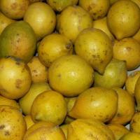 Limones para aliviar el asma