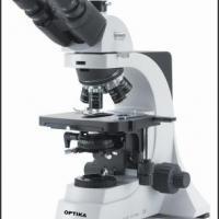 Microscopio de campo oscuro OPTIKA B-500 TDK