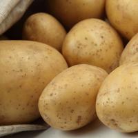 Recetas de patatas SaludBio