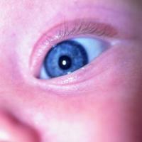 El peligro de los traumas infantiles